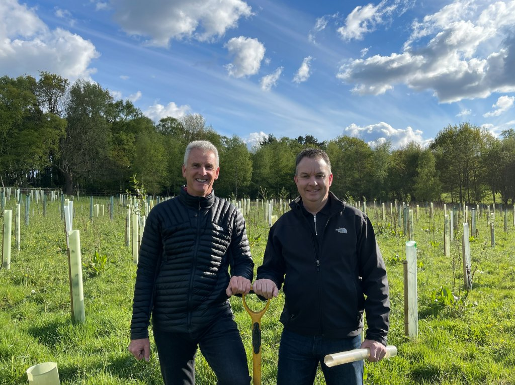 Planting trees to offset carbon emissions